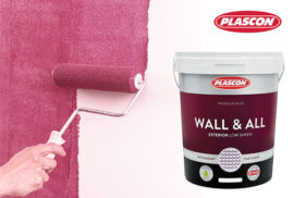 Plascon-Wall-and-all